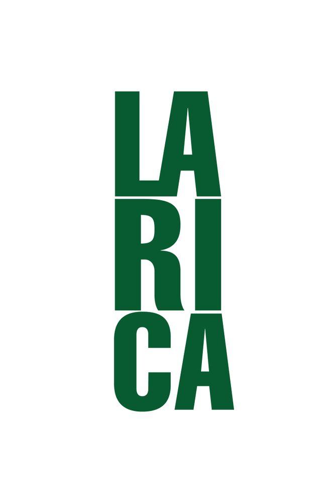 Camiseta-Larica---masculina-estampa